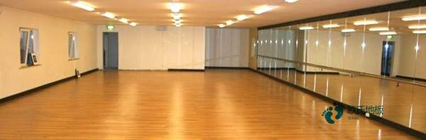 大型体育木地板十大品牌