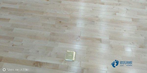 2021年篮球木地板欧氏地板品牌简介