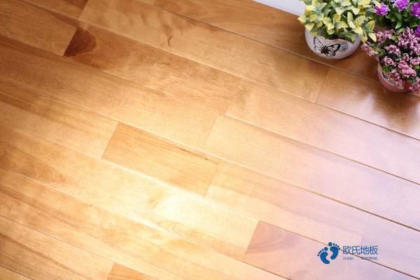 进口体育木地板保养