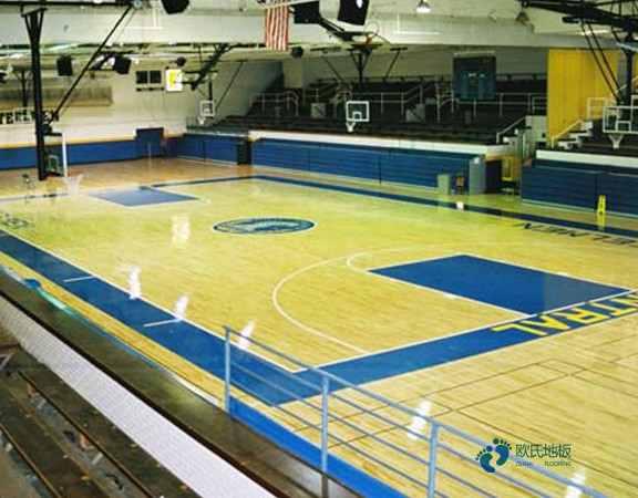 篮球场馆木地板免费1