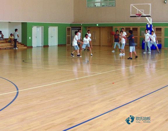 篮球场馆木地板免费2