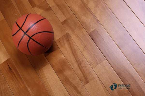 枫桦木价格是多少钱?运动木地板