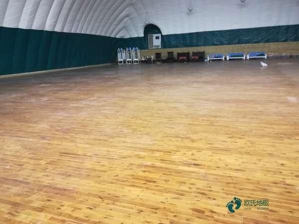 常用体育木地板厂家报价