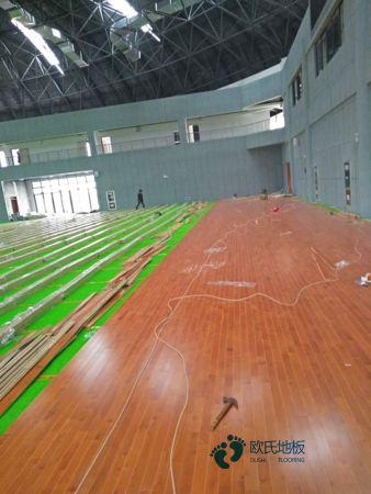 枫木体育木地板多少钱一平米?