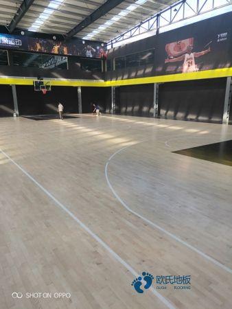 河南枫木体育木地板价格是多少