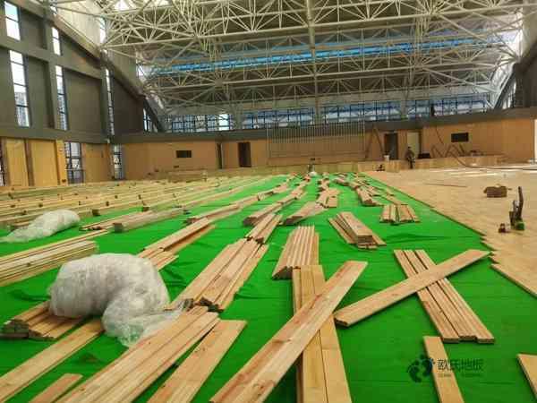 常见的舞蹈室木地板图片