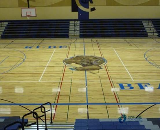 枫桦木体育场馆木地板怎样保养