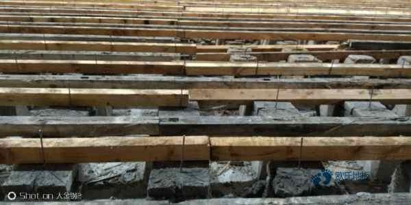 专业体育木地板