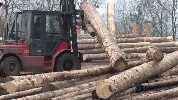 单龙骨体育场地木地板怎样保养