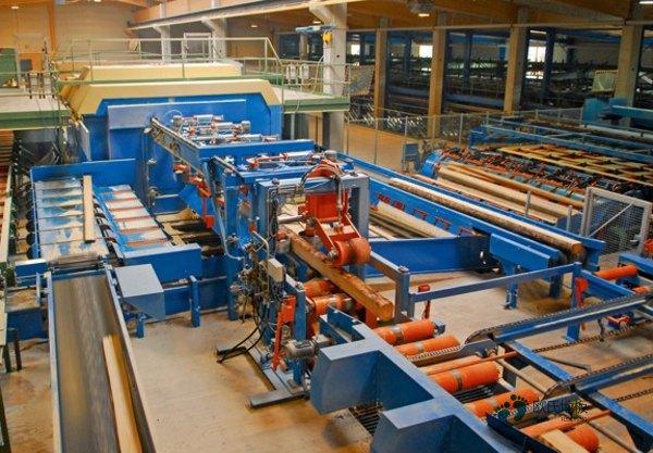 单龙骨体育场馆地板保养方法
