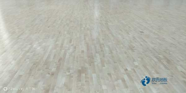 山西枫桦木篮球地板批发