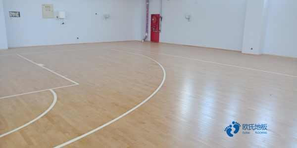 山东枫桦木体育场地板哪家便宜