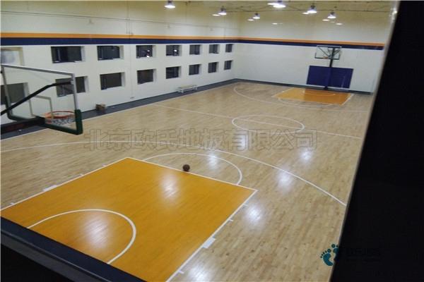 专用体育木地板公司