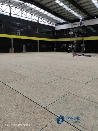 枫桦木运动实木地板品牌排行榜