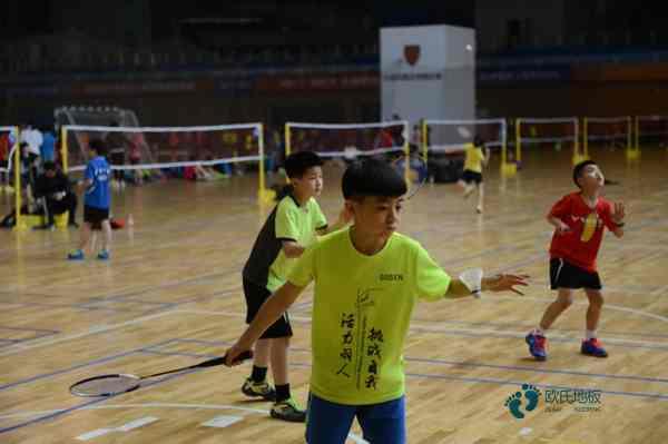 枫桦木篮球地板厂商