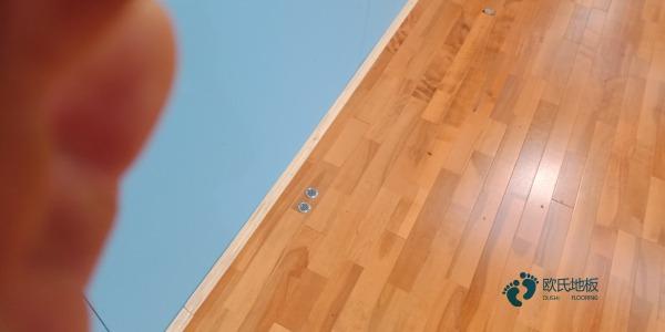 那有运动型木地板哪个品牌好