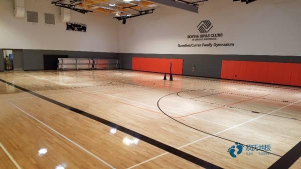 篮球木地板配色