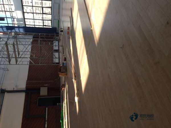 单层龙骨篮球场馆地板环保